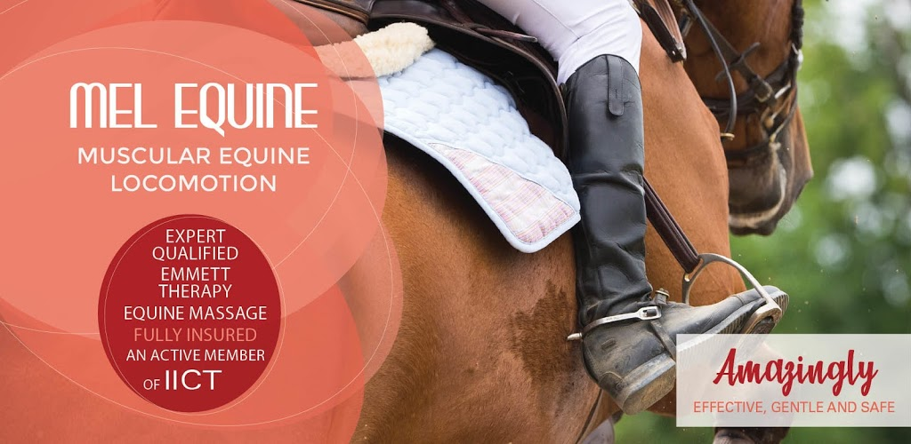 Mel Equine - EMMETT Therapy and Equine Massage   store   50km Surrounding, Maitland NSW 2320, Australia   0423051781 OR +61 423 051 781