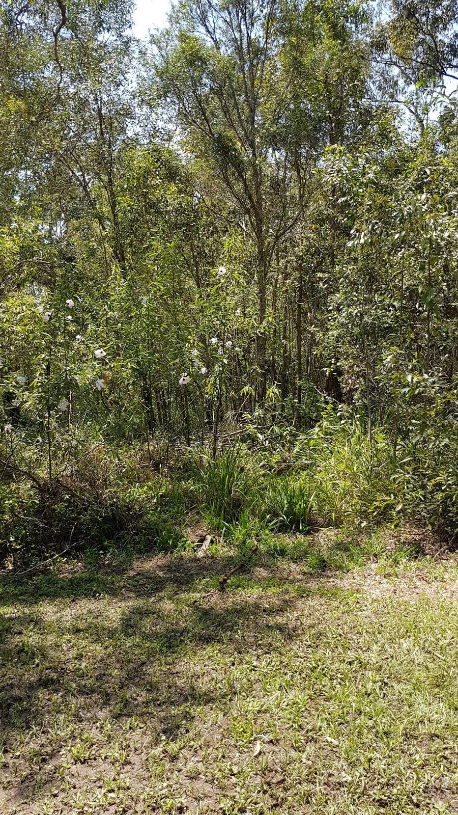 Harry McLaughlin Bird Sanctuary   park   Healy St, Caboolture QLD 4510, Australia