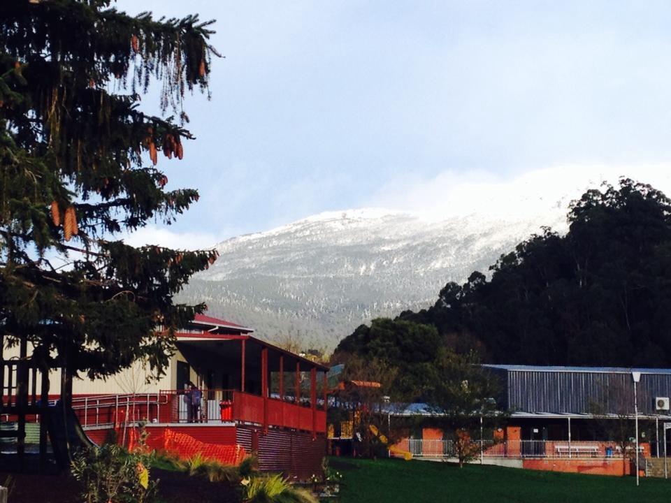 South Hobart Primary School | school | 59 Anglesea St, South Hobart TAS 7004, Australia | 0362236040 OR +61 3 6223 6040