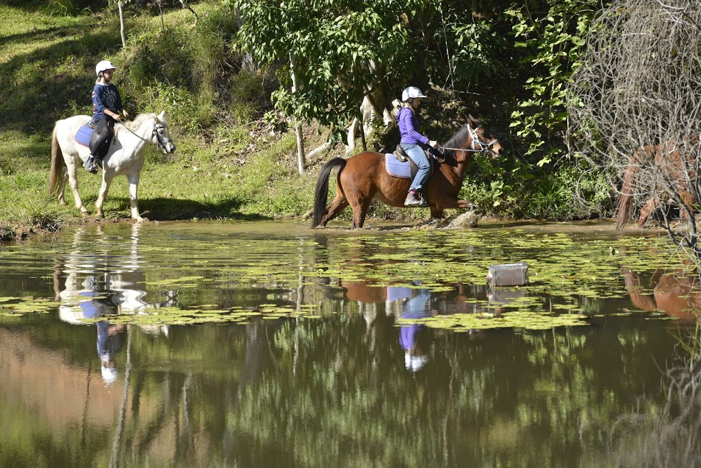 Kiah Park Horse Riding Camp | travel agency | 578 Beenham Valley Rd, Beenaam Valley QLD 4570, Australia | 0754866166 OR +61 7 5486 6166