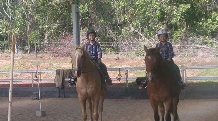 Ports Horse Farm | travel agency | L5 Heritage Lane, Craiglie QLD 4877, Australia | 0448082028 OR +61 448 082 028