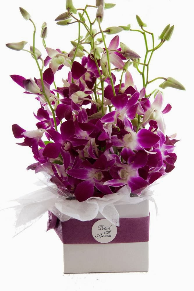 Petals and Scents Florist   florist   Shop 4, 2-4 Stamford Ave, Ermington NSW 2115, Australia   0289649285 OR +61 2 8964 9285