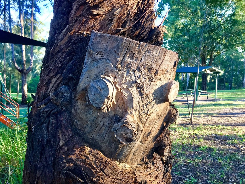 Third Settlement Reserve   park   3 Edison Parade, Winston Hills NSW 2153, Australia   0298065140 OR +61 2 9806 5140