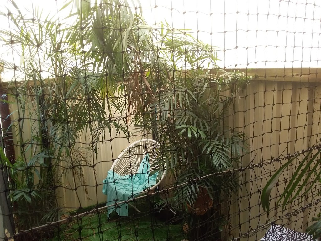 nanna kittys house | veterinary care | 10 Malcolm St, Beachmere QLD 4510, Australia | 0411386103 OR +61 411 386 103