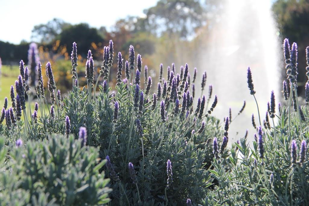 The Bath House Garden (Hunter Valley)   park   2 Forest Hill Dr, Maitland NSW 2320, Australia   0429117180 OR +61 429 117 180