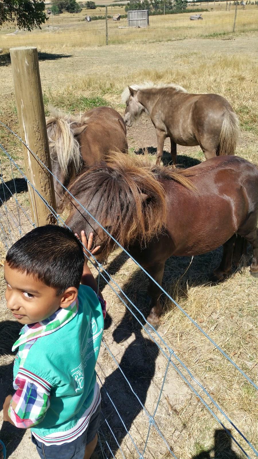 Learmonth Trout & Fauna Park   food   1552 Sunraysia Hwy, Addington VIC 3352, Australia   0353432287 OR +61 3 5343 2287