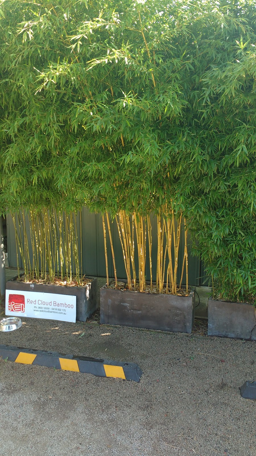 Red Cloud Bamboo   store   116 Old Dandenong Rd, Heatherton VIC 3202, Australia   0395518559 OR +61 3 9551 8559
