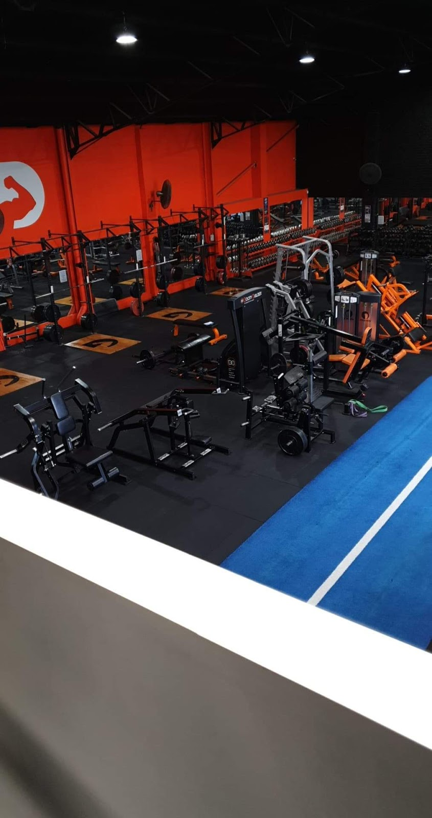 Definition Fitness Training | gym | 56-58 Swan St, Wollongong NSW 2500, Australia | 0242269143 OR +61 2 4226 9143