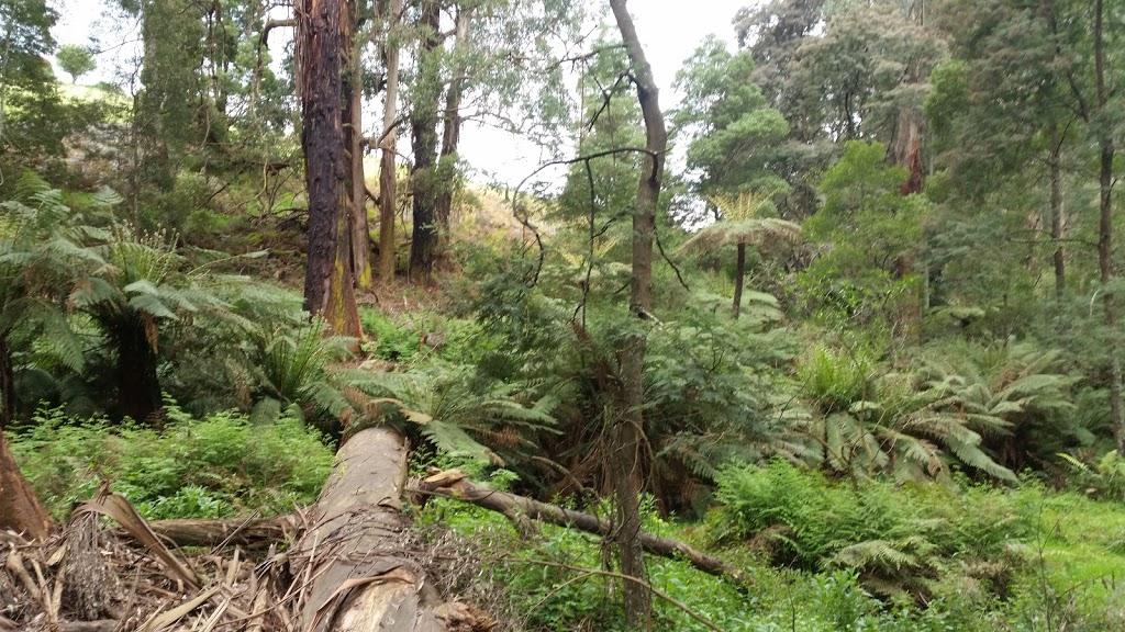 Avard Picnic ground | park | Emerald VIC 3782, Australia