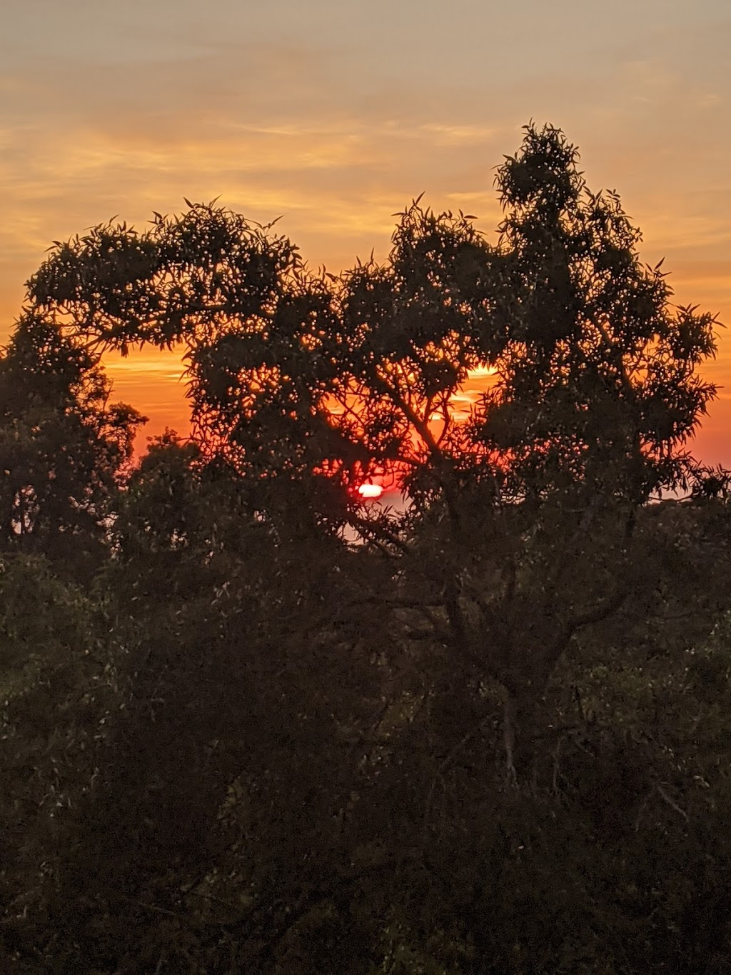 The Love Shack - a very comfortable room with a view | lodging | Kurrajong NSW 2758, Australia