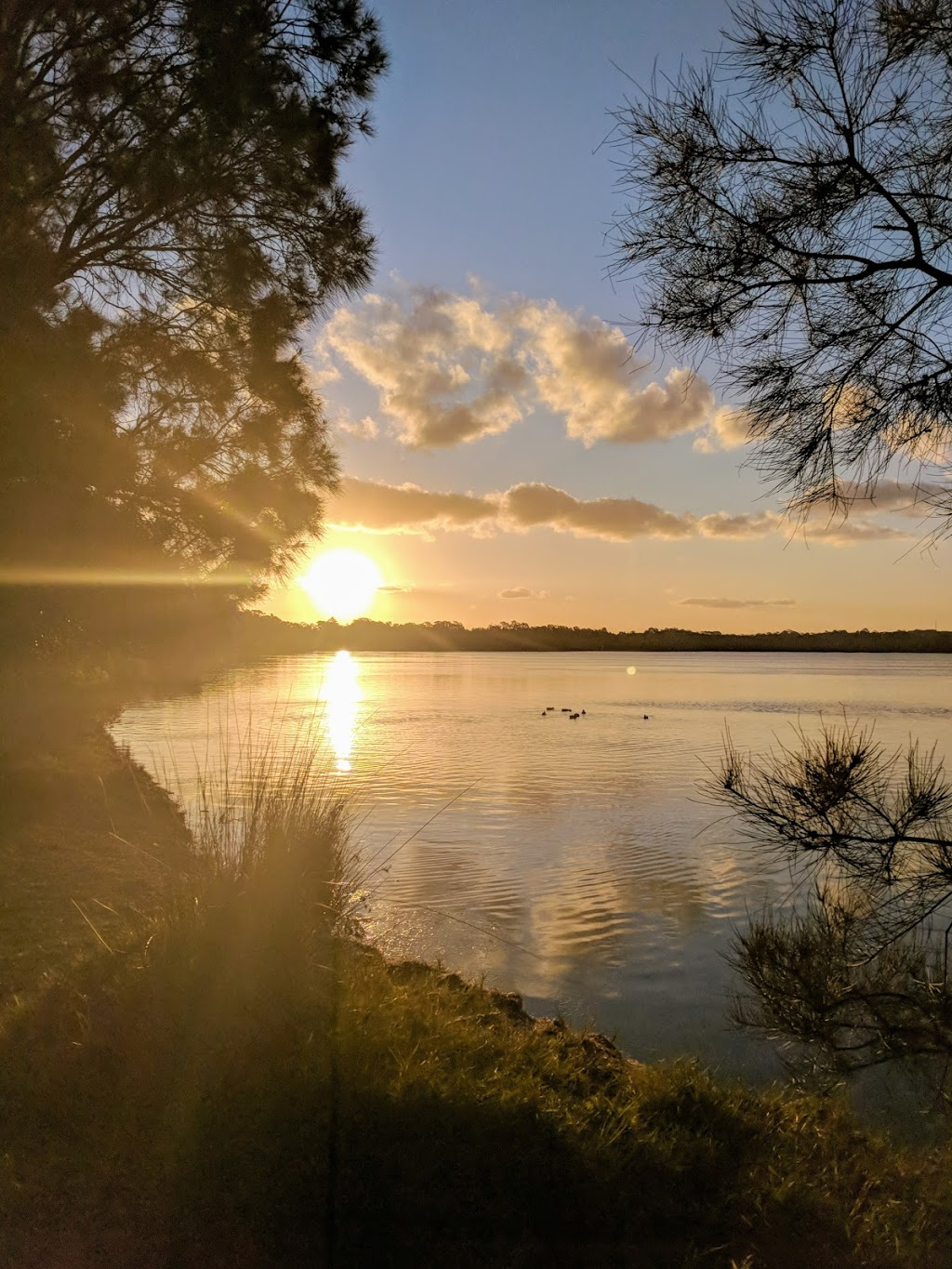 Central Coast Holiday Parks - Lodging | Weemala St, Budgewoi