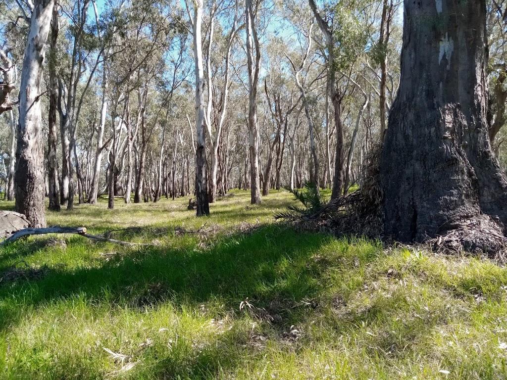 Berembed Weir | point of interest | Murrumbidgee River, Matong NSW 2652, Australia | 1300676243 OR +61 1300 676 243