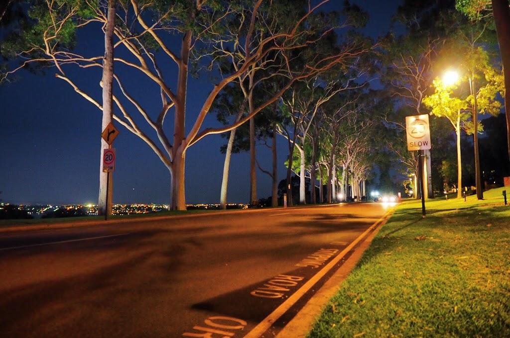 Aboriginal Art Gallery | art gallery | 68 Fraser Ave, Kings Park WA 6005, Australia | 0894817082 OR +61 8 9481 7082