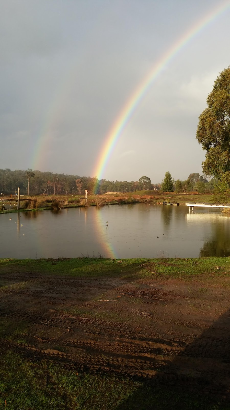 Blackwood River National Park   park   Sues Rd, Darradup WA 6275, Australia   0897525555 OR +61 8 9752 5555