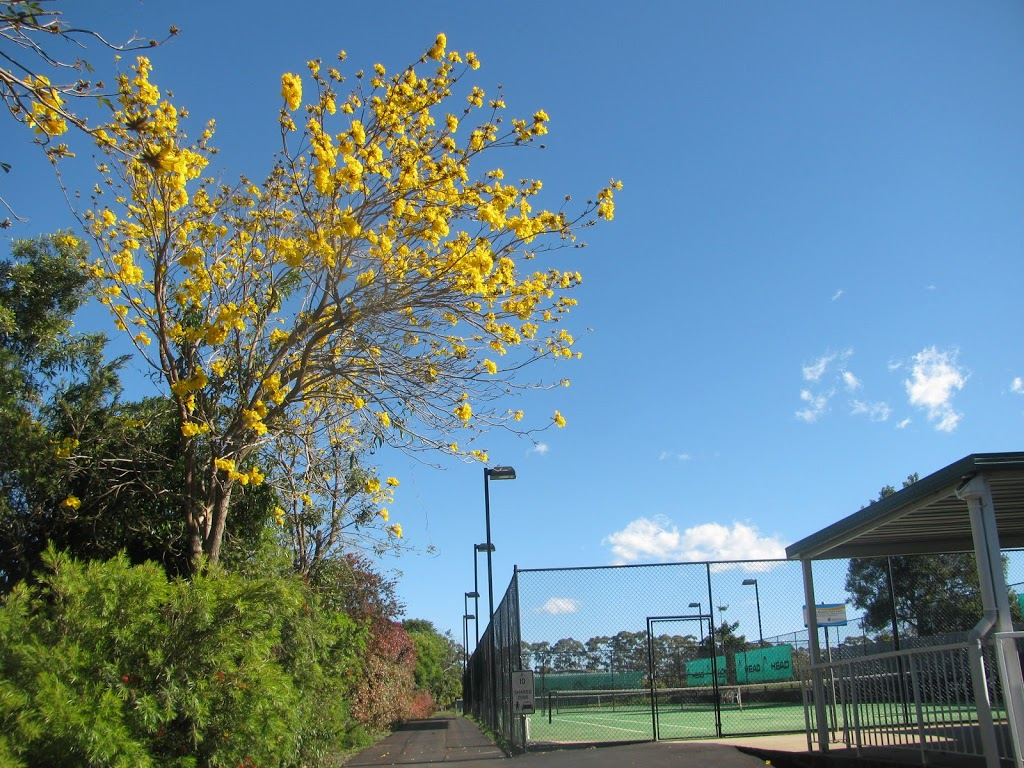 Tamborine Mountain Tennis Club   point of interest   88 Beacon Rd, Tamborine Mountain QLD 4272, Australia   0477775671 OR +61 477 775 671