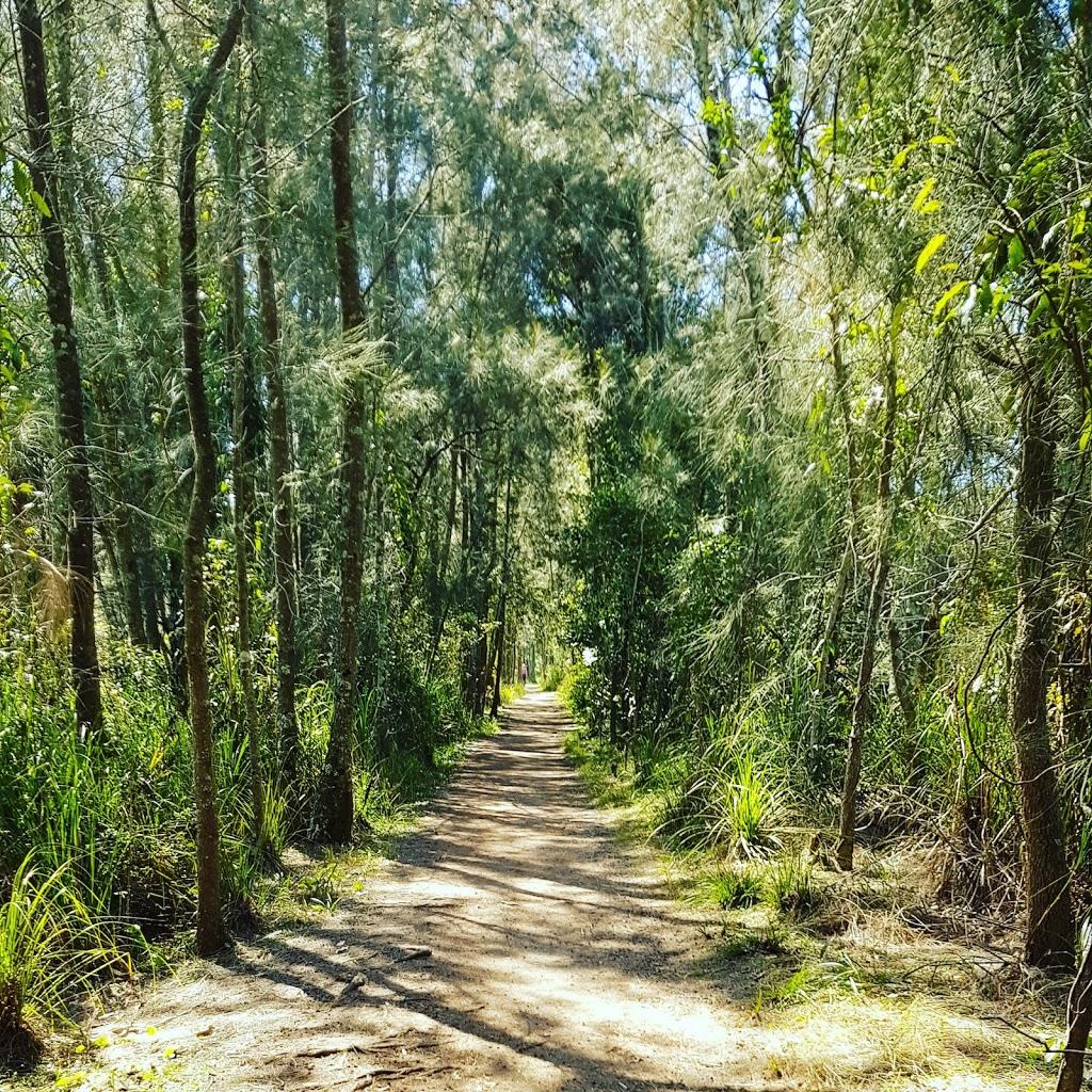 Life Of Allan: Warriewood Wetlands