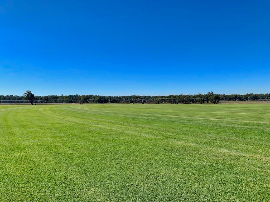 Turf Galore | point of interest | Weir Rd, Galore NSW 2650, Australia | 0418579389 OR +61 418 579 389