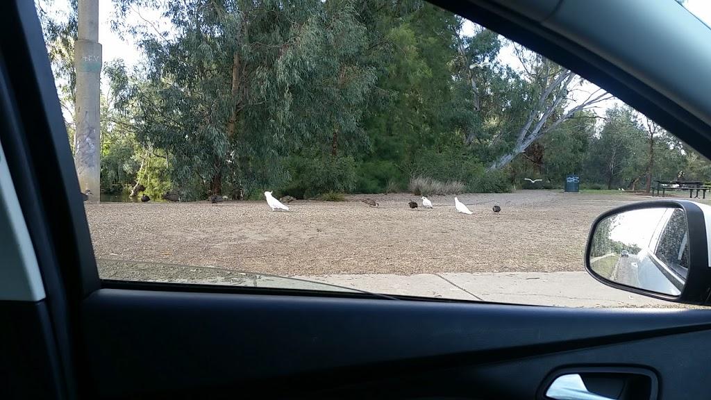 Wollundry Lagoon | park | 113 The Esplanade, Wagga Wagga NSW 2650, Australia