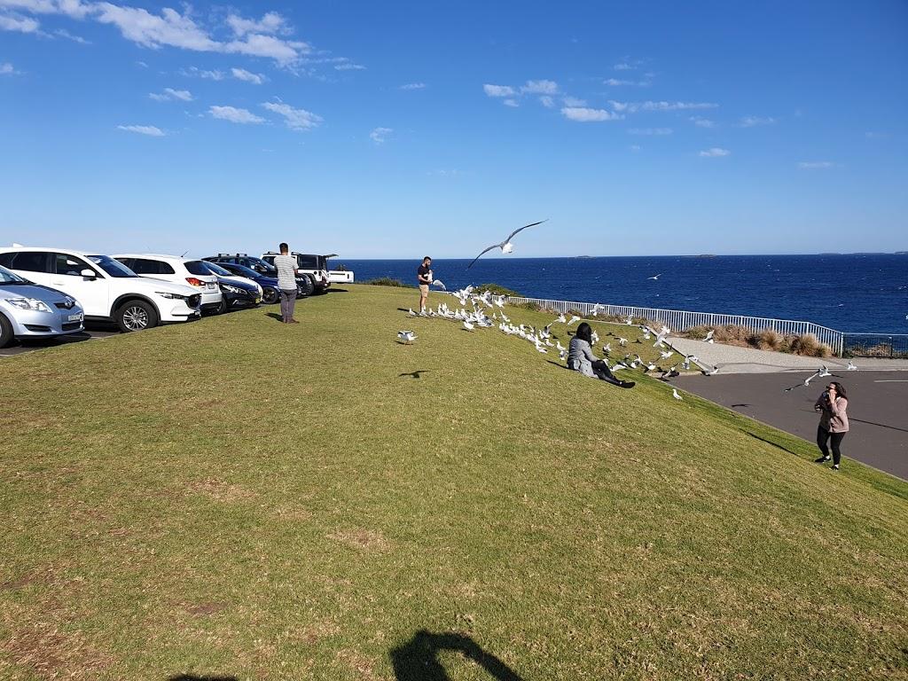 LOT 2 Endeavour Dr Parking | parking | LOT 2 Endeavour Dr, Wollongong NSW 2500, Australia