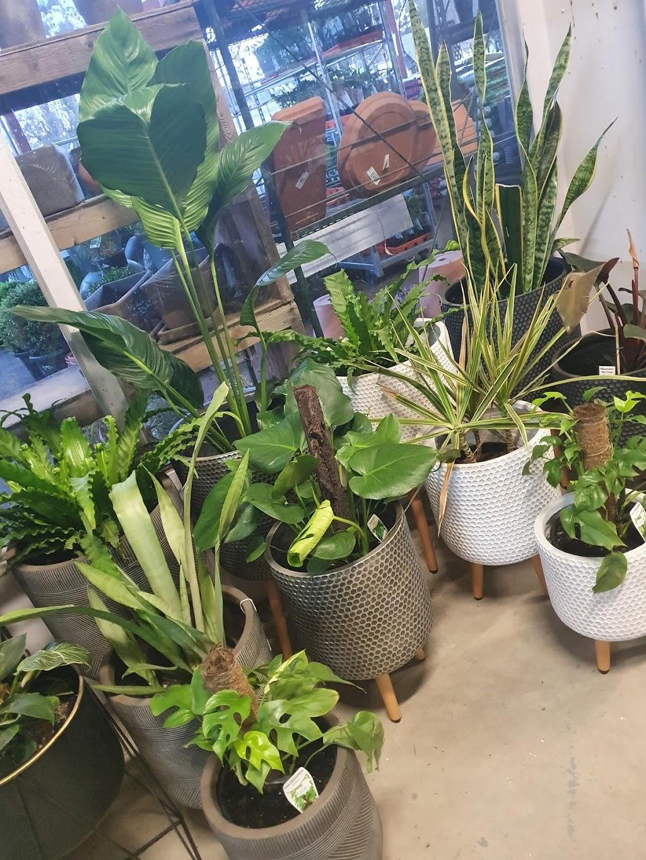 Greentime Nursery | pet store | 5961 Sunraysia Hwy, St Arnaud VIC 3478, Australia | 0354951422 OR +61 3 5495 1422