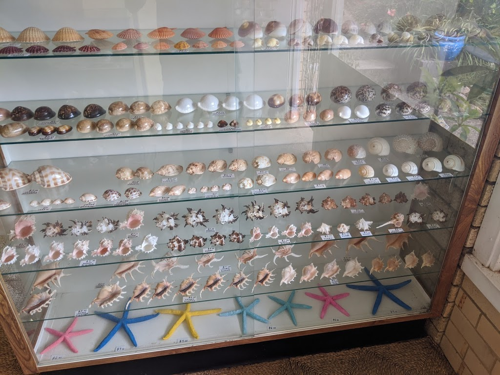 The Shell Shop | museum | 189 Gregory St, South West Rocks NSW 2431, Australia