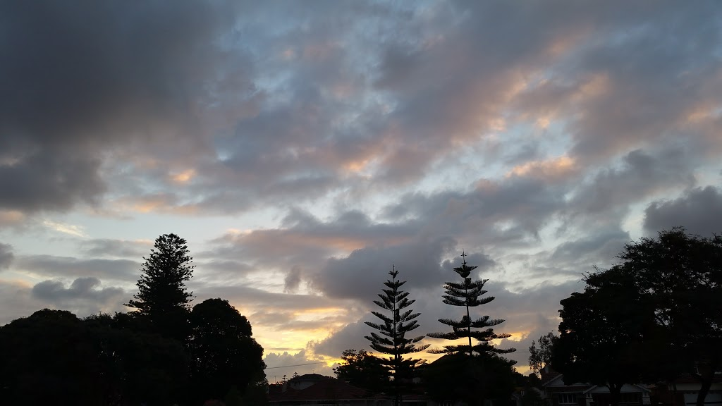 Alexander Park | park | 40 Melrose Cres, Menora WA 6050, Australia