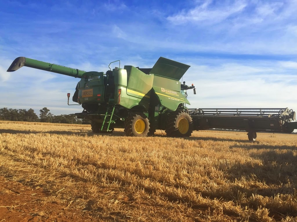 Dickeson Harvesting | general contractor | 664 Post Office Rd, Ross Creek VIC 3351, Australia | 0428343531 OR +61 428 343 531