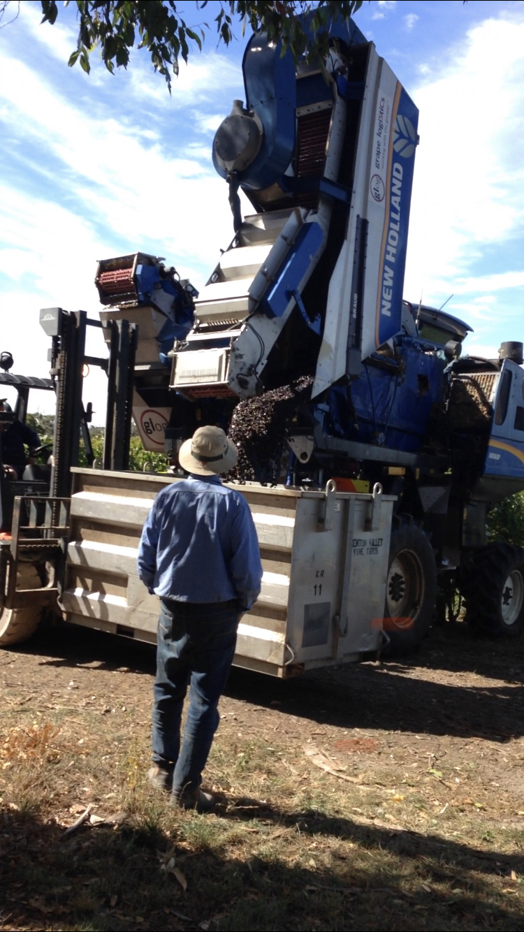 Group Logistics, GLOG Viticulture & Grape Sales   point of interest   18 Quarry Rd, Woodside SA 5244, Australia   0883899550 OR +61 8 8389 9550