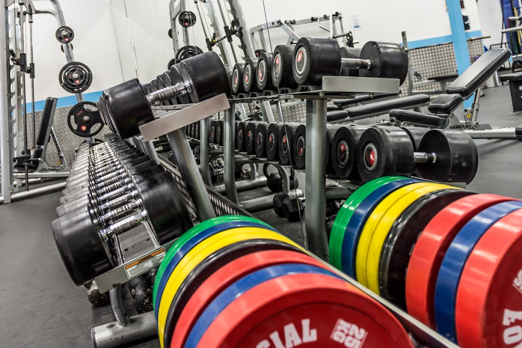 MOD Fitness 24/7   gym   9/1 Santa Maria Ct, Burleigh Waters QLD 4220, Australia   0755353754 OR +61 7 5535 3754