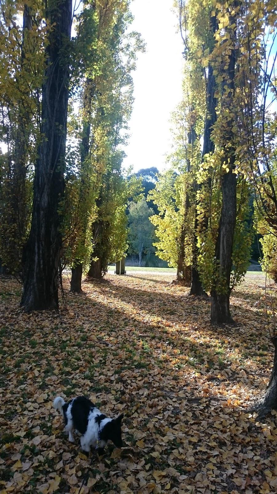 Banjo Paterson Park   park   78 Meehan St, Yass NSW 2582, Australia   0262261477 OR +61 2 6226 1477