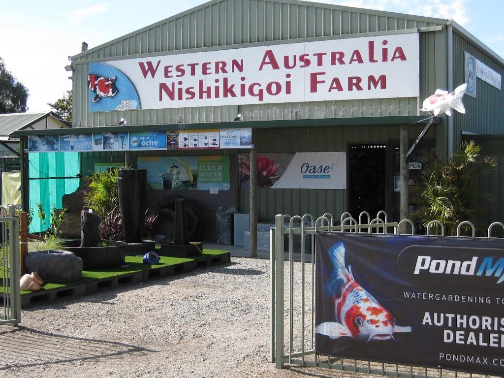Western Australia Nishikigoi Farm | pet store | 627 Armadale Rd, Piara Waters WA 6112, Australia | 0893970105 OR +61 8 9397 0105