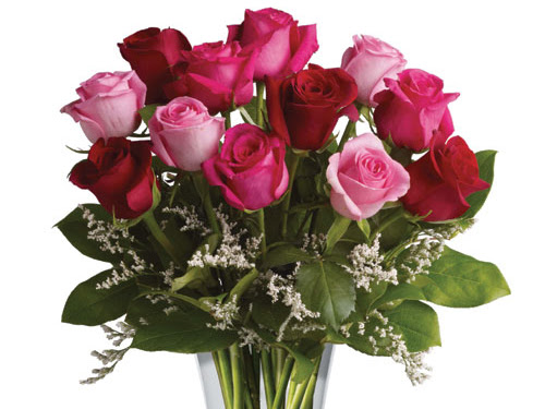 Tanby Roses   florist   Shop 2/17 James St, Yeppoon QLD 4703, Australia   0749392266 OR +61 7 4939 2266
