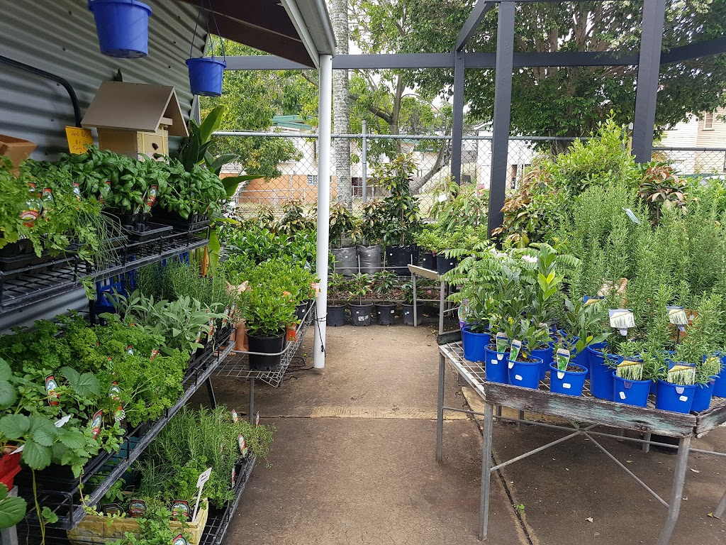 Cottage Garden Nursery | park | 999 Stanley St E, East Brisbane QLD 4169, Australia | 0738917999 OR +61 7 3891 7999