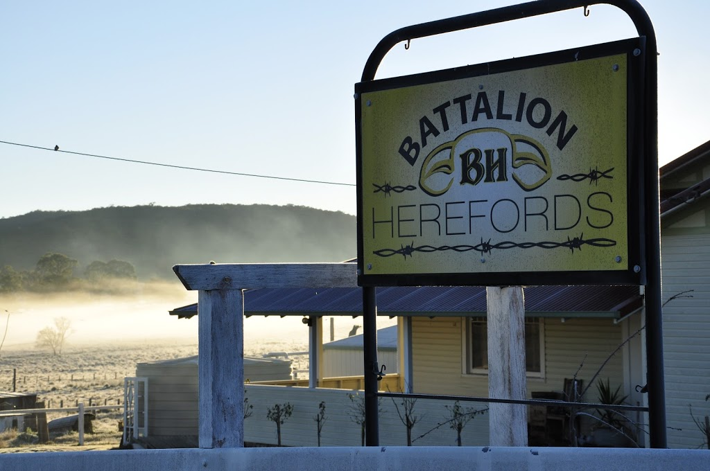 """Battalion Herefords & Speckle Park 