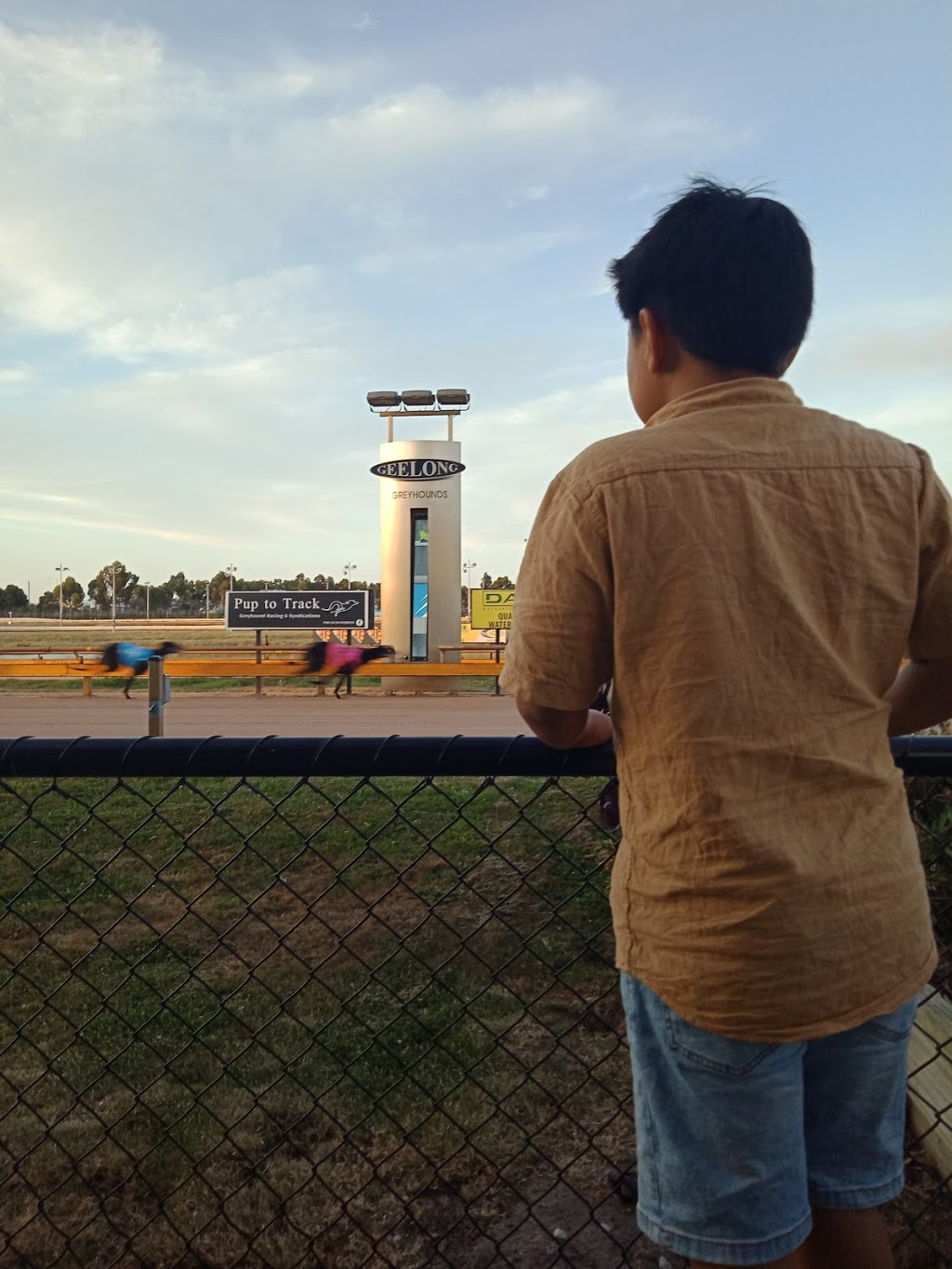 Geelong Greyhound Racing Club | point of interest | Beckley Park, Broderick Rd, Corio VIC 3214, Australia | 0352752298 OR +61 3 5275 2298