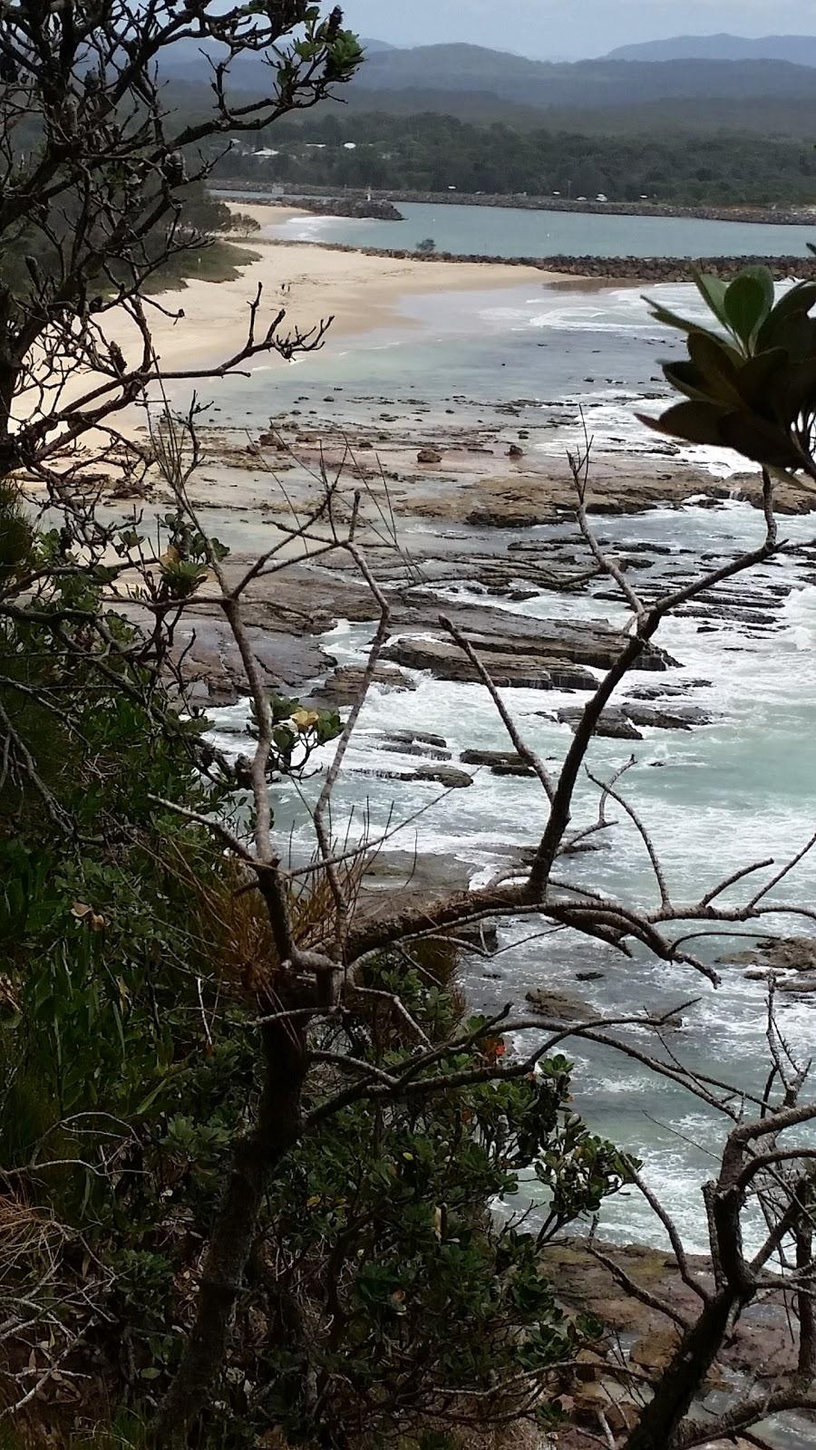 Whale Watching Vantage Point | museum | Perpendicular Point Walk, Camden Head NSW 2443, Australia
