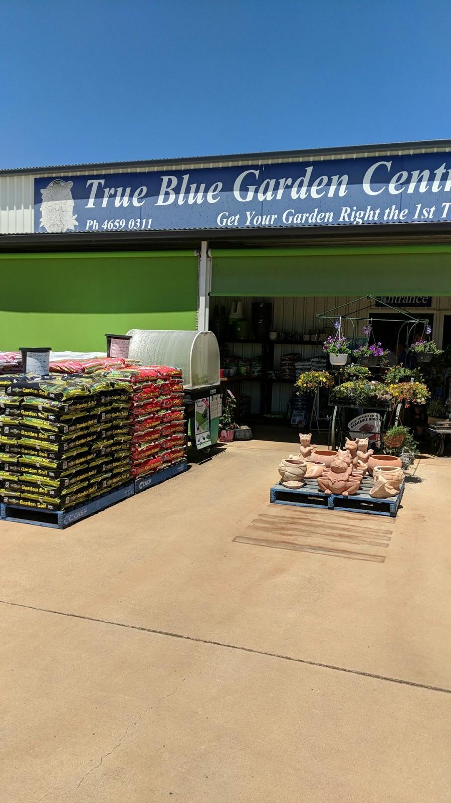 True Blue Garden Centre - Store | 127 Hursley Rd, Toowoomba