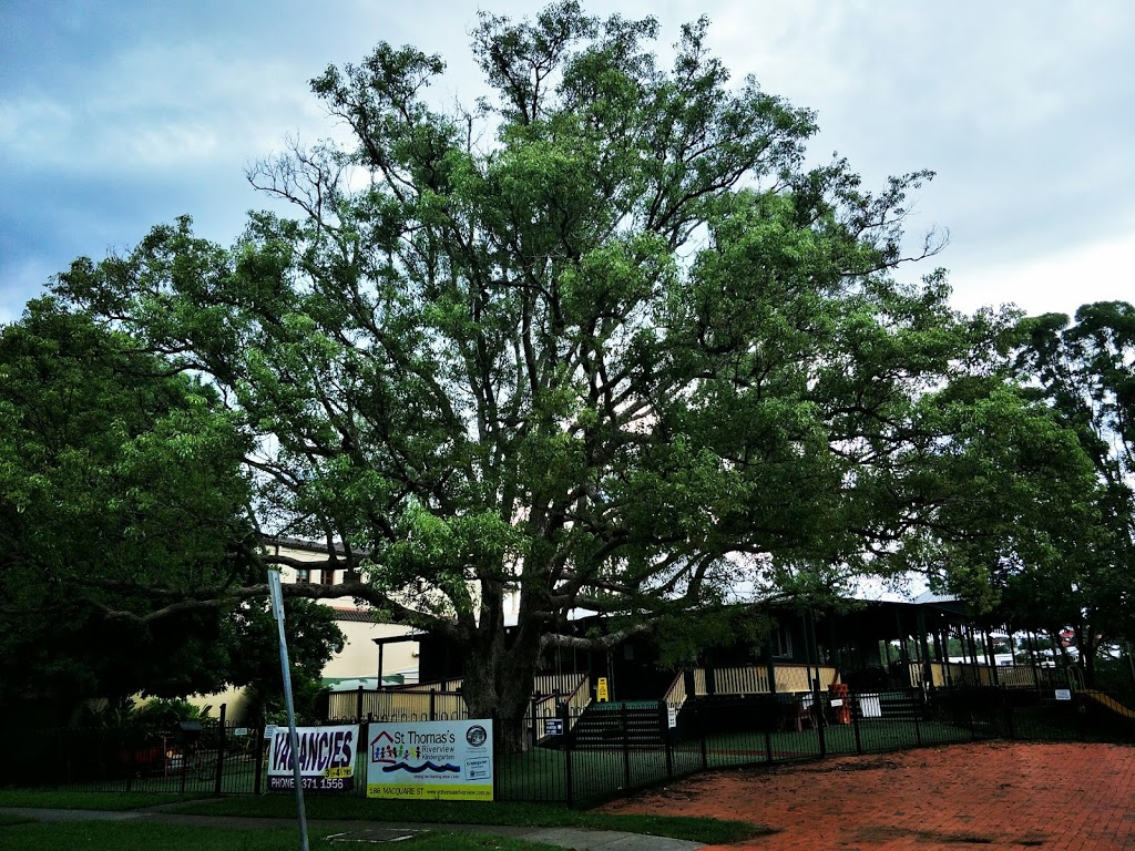 St Thomas's Riverview Kindergarten | school | 186 Macquarie St, St Lucia QLD 4067, Australia | 0733711556 OR +61 7 3371 1556