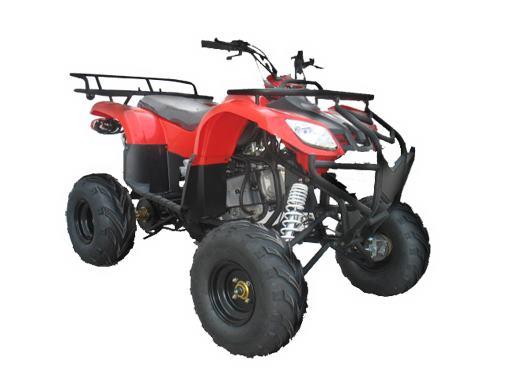 Happy Jacksons Pocket Bikes Dirt Bikes Quads   car repair   105 Lobb St, Churchill QLD 4305, Australia   0732813141 OR +61 7 3281 3141