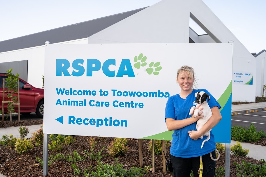 RSPCA Toowoomba Animal Care Centre - Lot 75 Airport Dr, Wellcamp QLD 4350,  Australia
