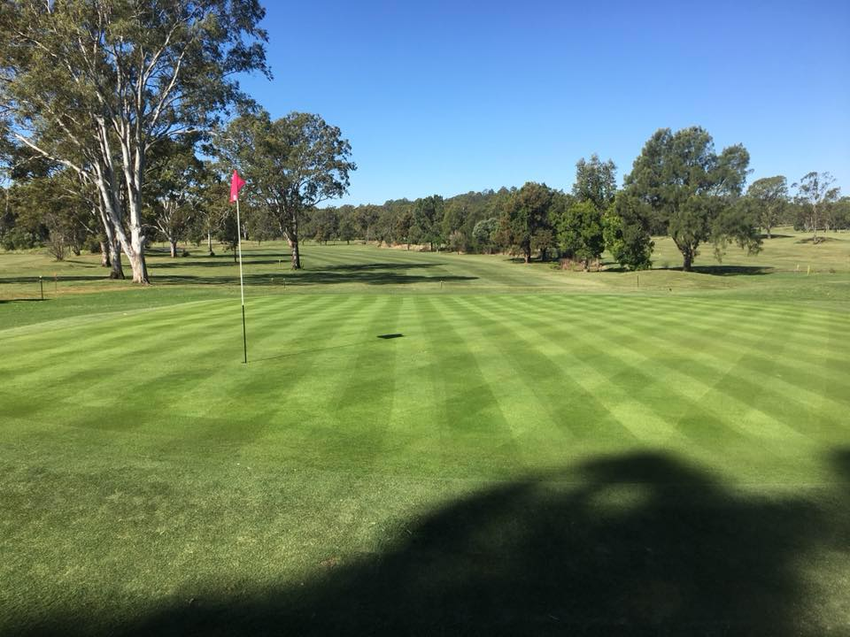 Meadowbrook Golf Club   point of interest   Golf Course Dr, Meadowbrook QLD 4131, Australia   0732996653 OR +61 7 3299 6653