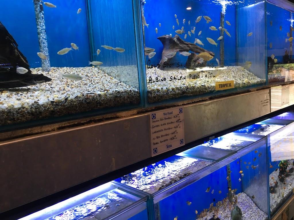 Crystal Palace Aquarium Five Dock   pet store   48-50 Ramsay Rd, Five Dock NSW 2046, Australia   0297137571 OR +61 2 9713 7571