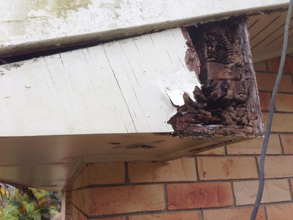 Bundaberg Building and Pest Inspections   electrician   79 Barolin St, Bundaberg South QLD 4670, Australia   1800466456 OR +61 1800 466 456