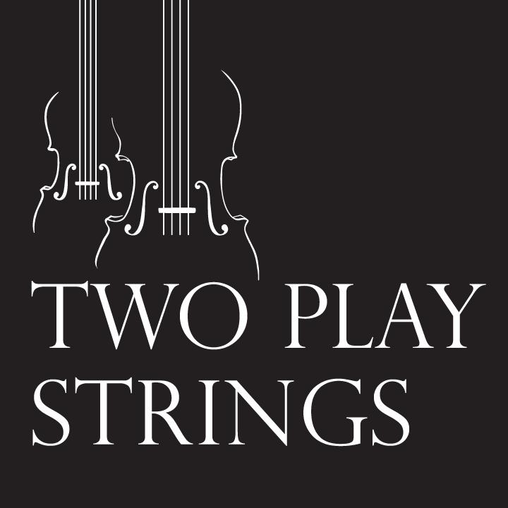Two Play Strings | electronics store | 27 Baikie Cres, Charlestown NSW 2290, Australia | 0400788229 OR +61 400 788 229
