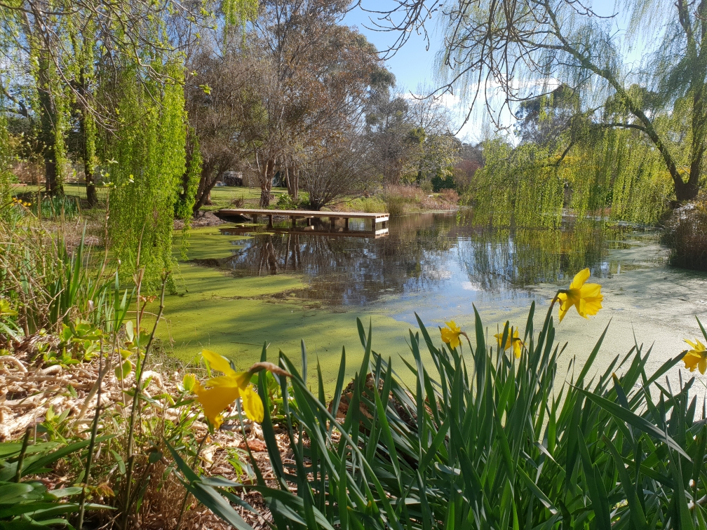 Graton Gardens   park   48 Roadknight St, Birregurra VIC 3242, Australia   0425719182 OR +61 425 719 182