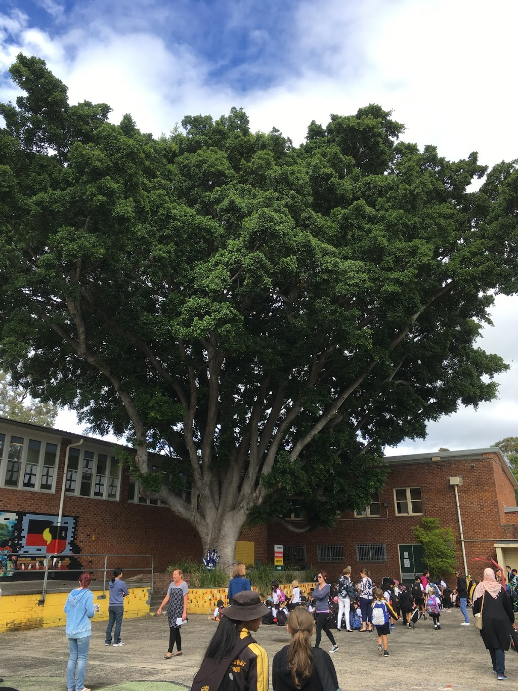 Wollongong West Public School | school | 442 Crown St, West Wollongong NSW 2500, Australia | 0242292096 OR +61 2 4229 2096
