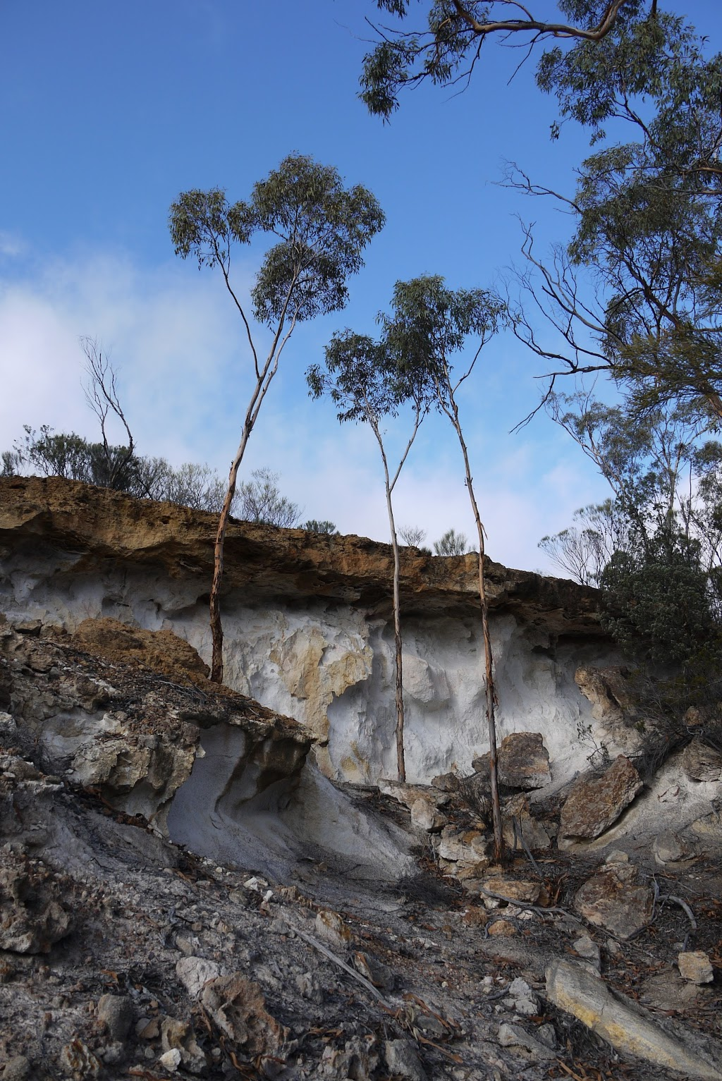 Chiddarcooping Nature Reserve Sign | park | Morrison Rd, Warralakin WA 6421, Australia