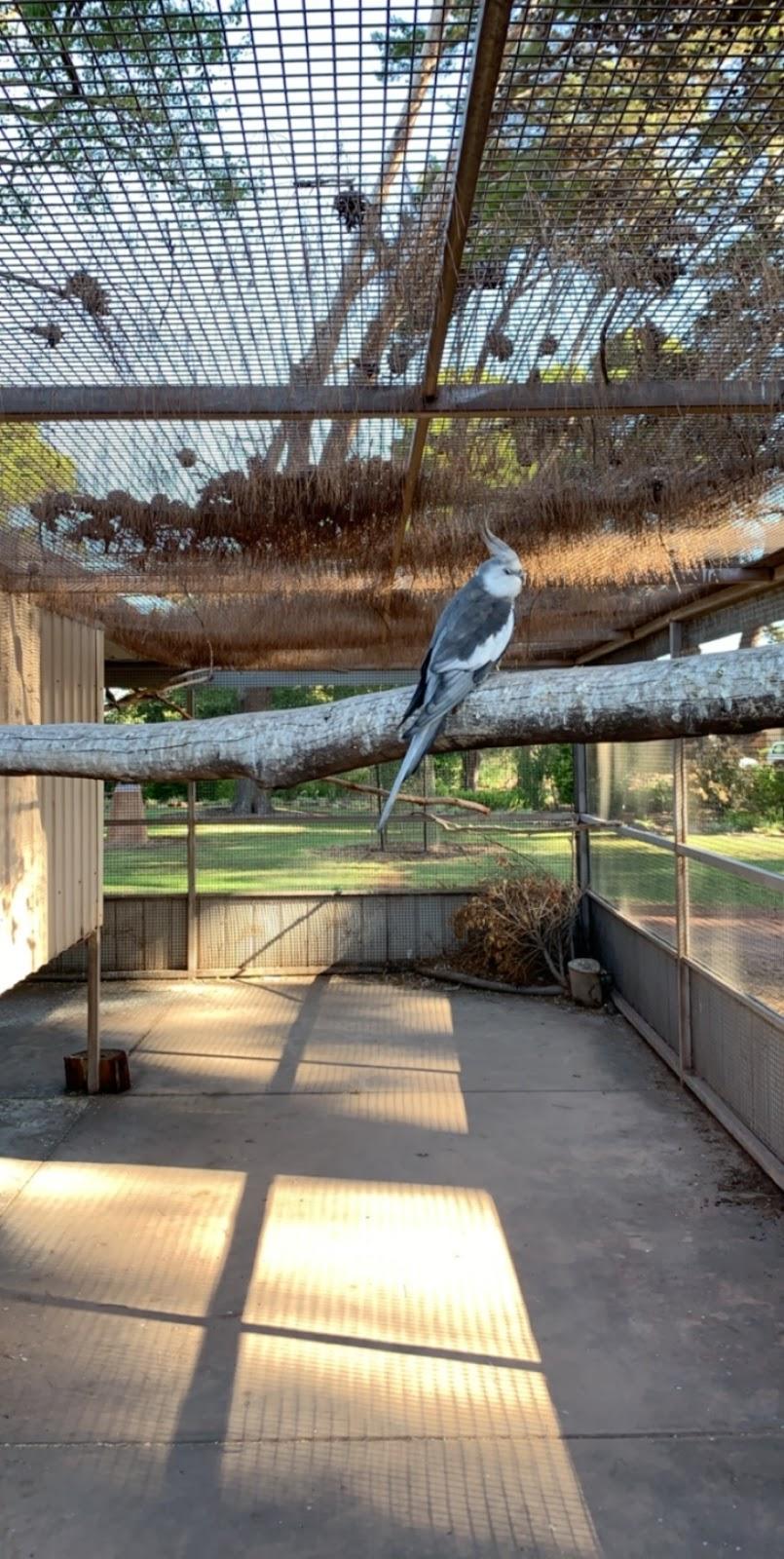 Ada Ryan Gardens | park | Whyalla SA 5600, Australia