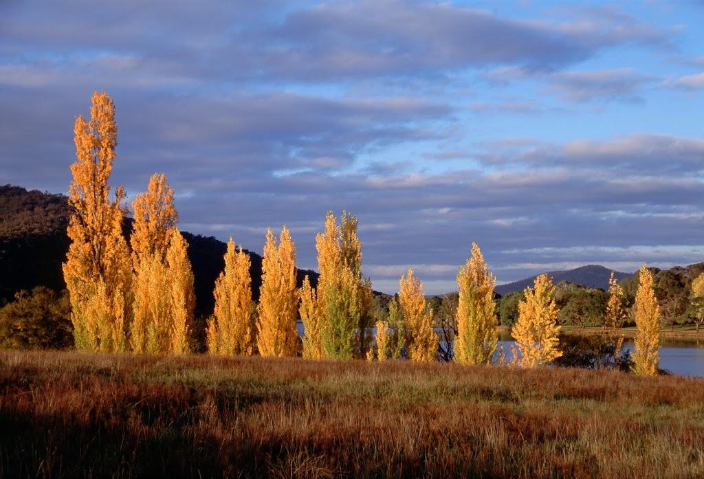 Yarramundi Reach | park | Australian Capital Territory 2602, Australia