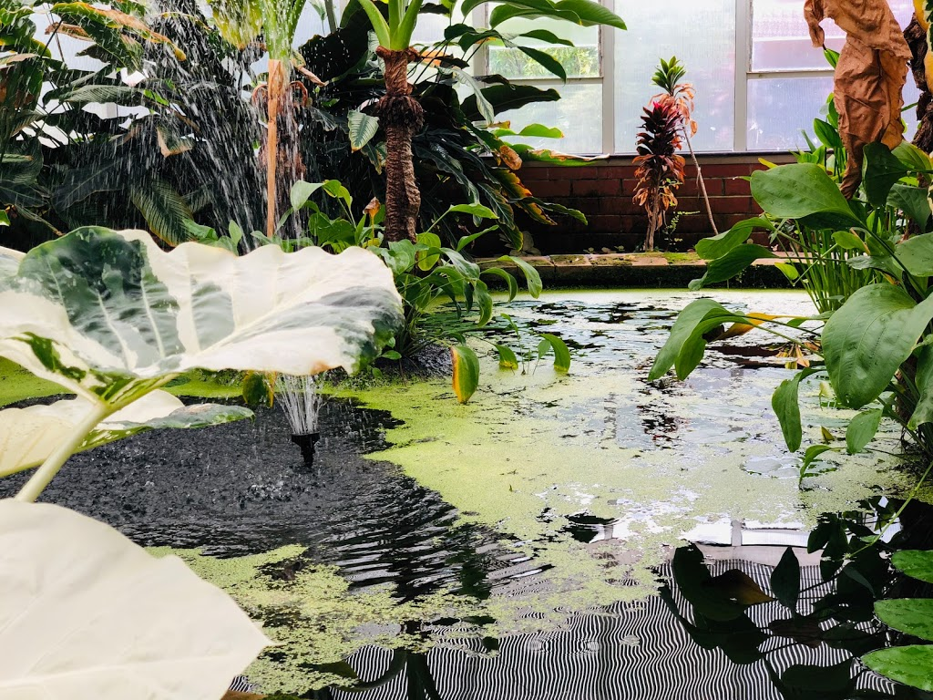 Wollongong Botanic Garden | park | Murphys Ave, Keiraville NSW 2500, Australia | 0242277667 OR +61 2 4227 7667